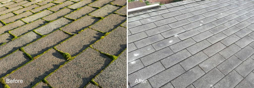 Roof Moss Removal In Woodinville